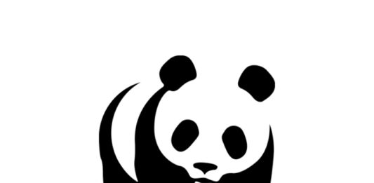 WWF Opportunity: Communication Assistant/Intern for Regional Office for Africa