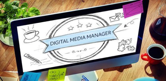 Vacancy in Youth Time: Digital Media Manager and Creative Manager