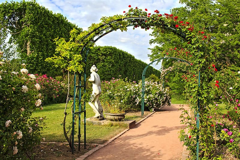 Jardin de Plant in Paris