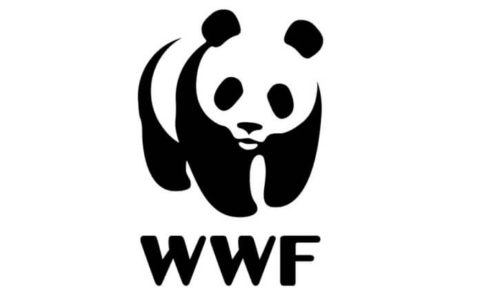 Communications Volunteer with WWF in Cambodia