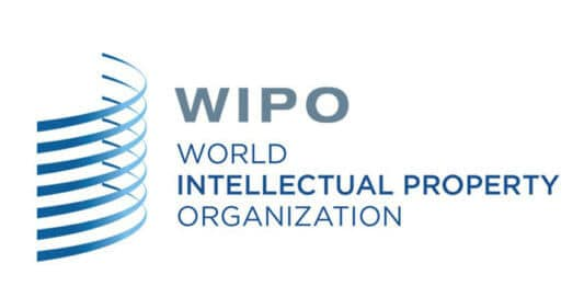 Summer Schools on Intellectual Property