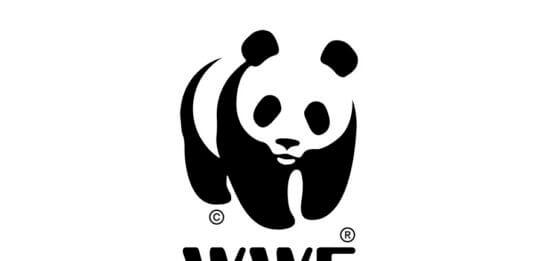 Opportunity to Volunteer with WWF Bolivia