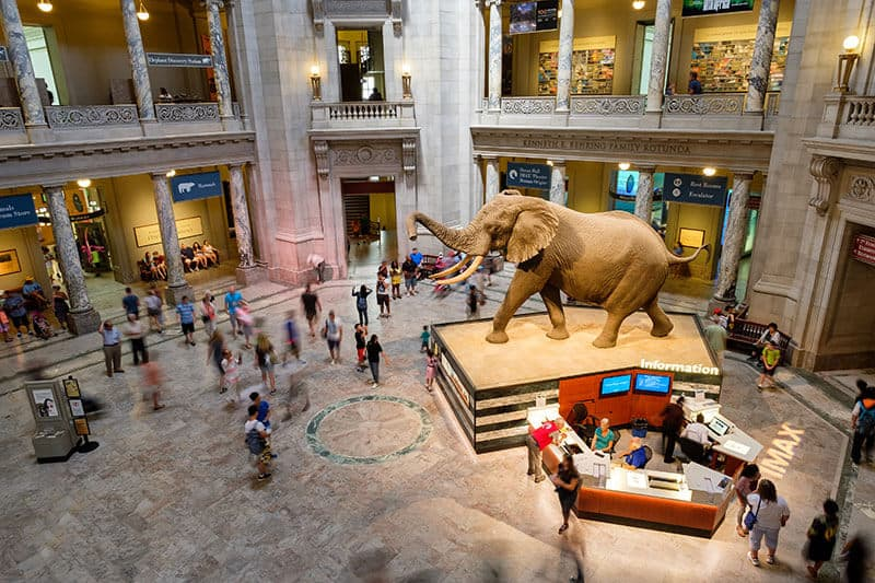 Museums for free