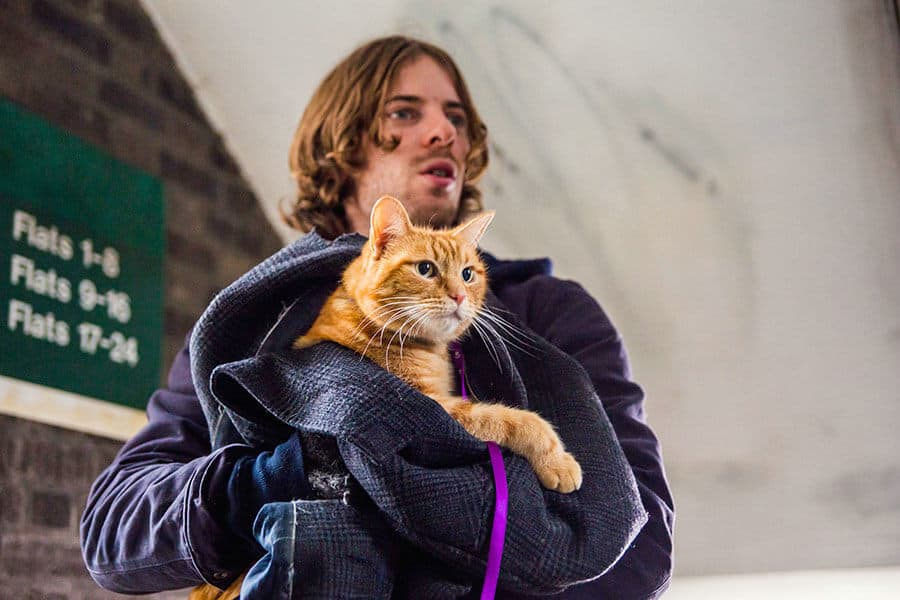 From the movie A Street Cat Named Bob