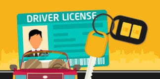 Young Driver's Tips
