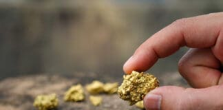 The pure gold ore