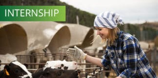 Internship Program at a Dairy Farm in the US