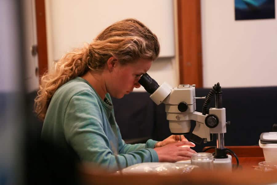 Dr. Emily Duncan examines the collected samples taken during eXXpedition´s North