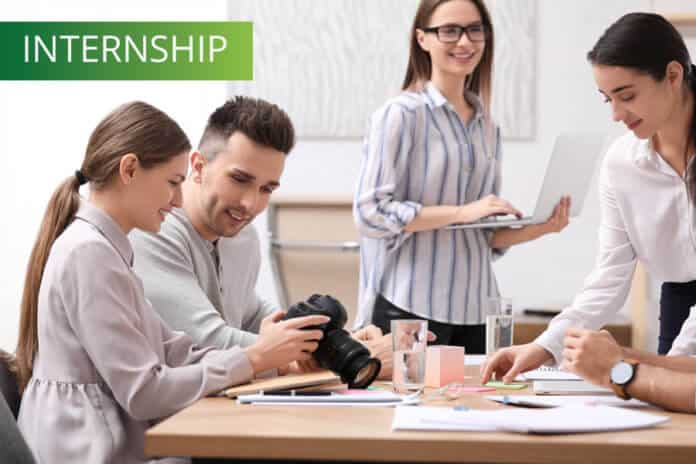 Professional team working in office