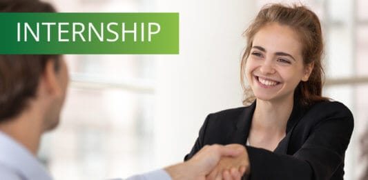 Smiling intern with a businessman at meeting