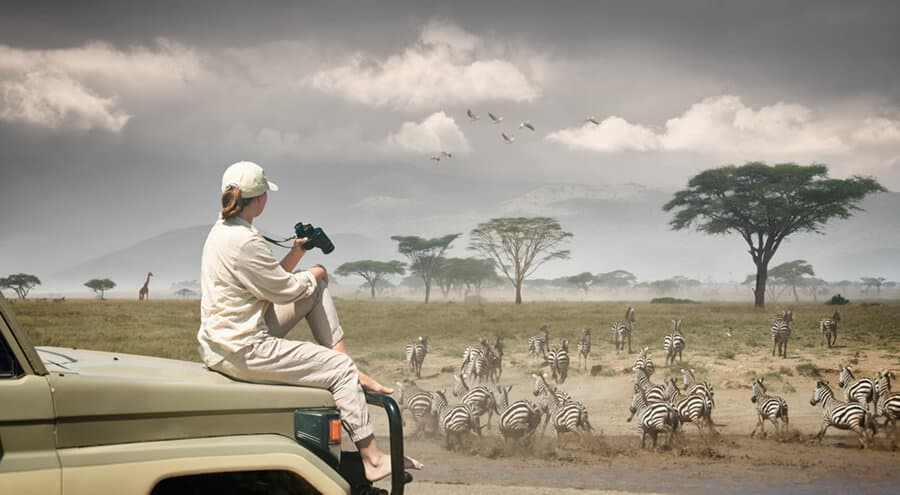 Traveling and research Student observing an African wildlife