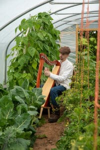 Harpist playing to the crops