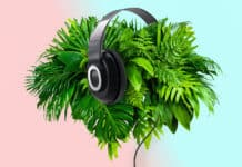 The Incredible Relationship Between Plants and Music