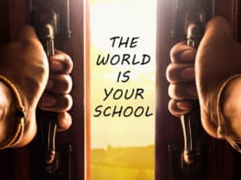 The world is your school