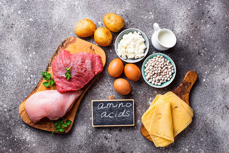 Food rich in amino acids