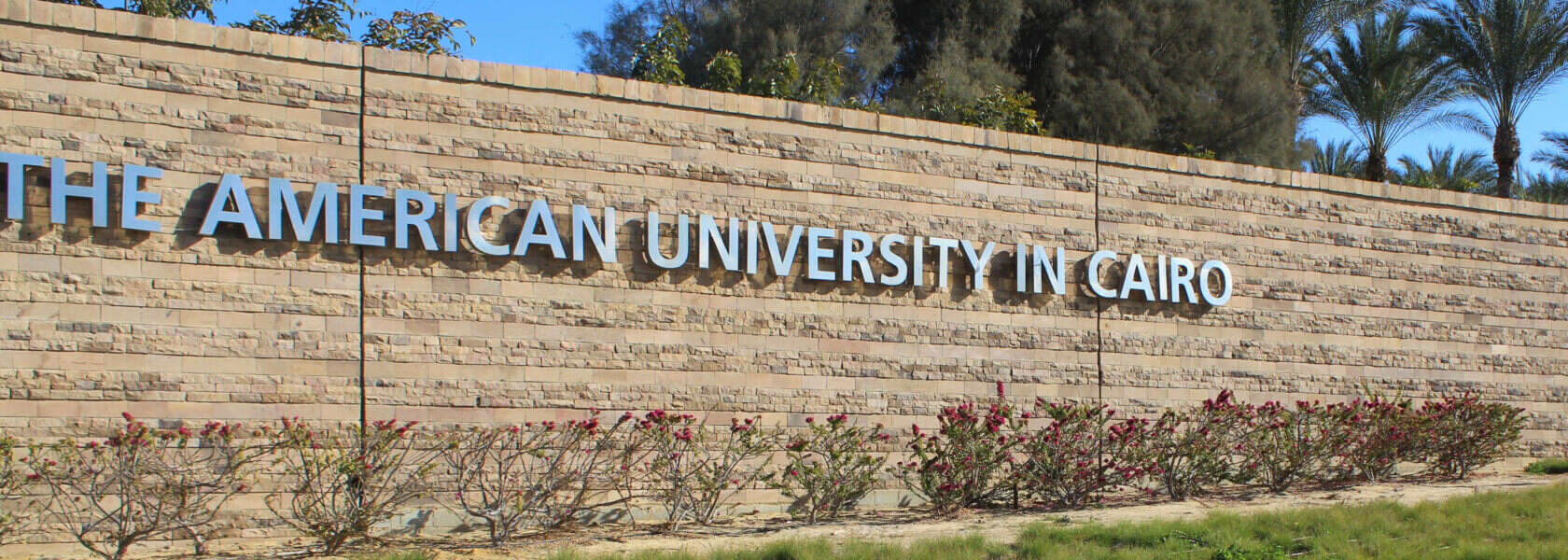 Graduate Scholarships For MENA Students At American University in Cairo