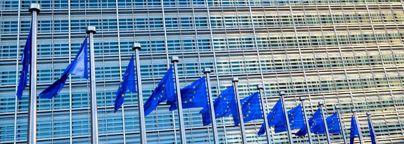 The Blue Book Traineeship With The European Commission